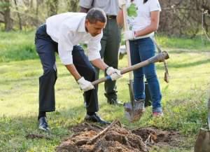 Obama National Service