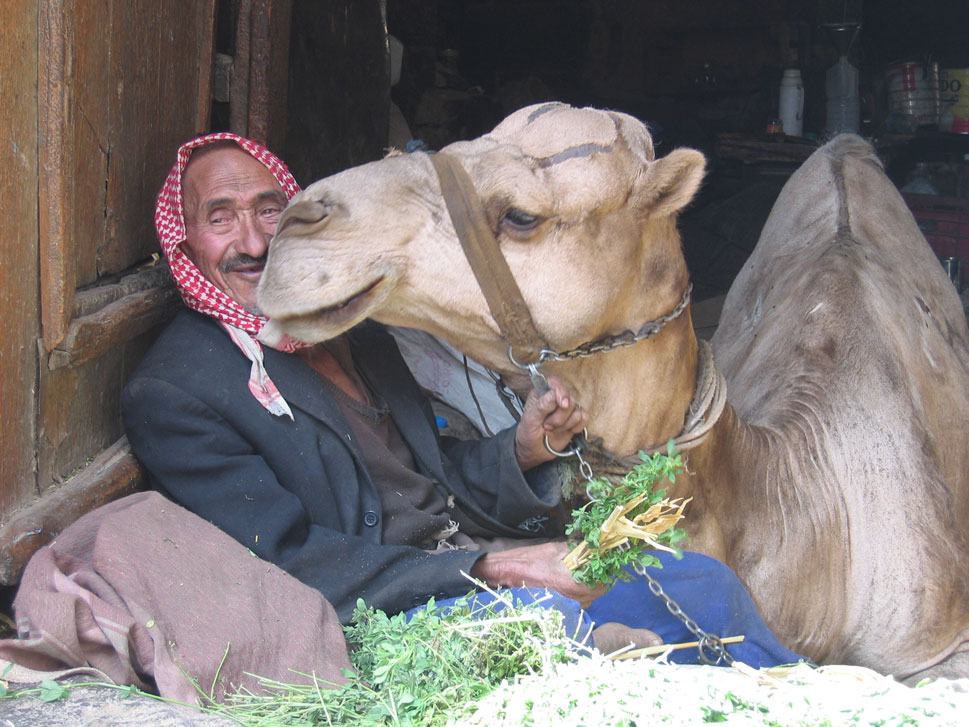 al qaeda in the arabian peninsula essay In november 2009, the rump of the saudi branch of al-qaeda merged with the yemeni organisation to form al-qaeda in the arabian peninsula (aqap), a group with .